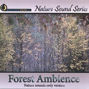 Forest Ambience (Nature sounds only version)