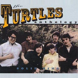 Solid Zinc: The Turtles Anthology