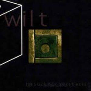 The Black Box Aesthetic