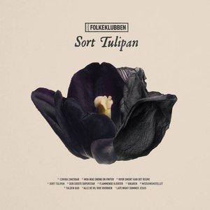 Sort Tulipan