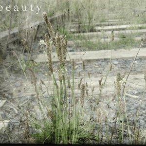 Avatar de Ethereal Beauty