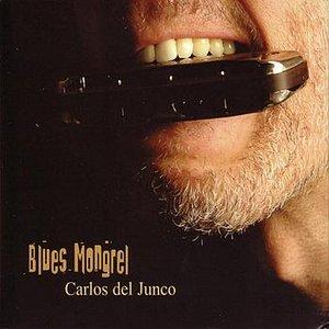 Blues Mongrel