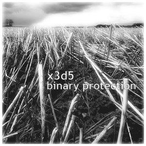 Binary Protection