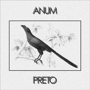 Anum Preto