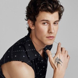 Avatar de Shawn Mendes