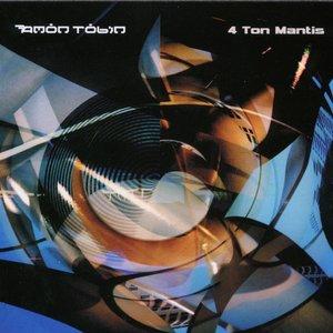 4 Ton Mantis