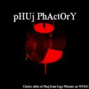 Bild für 'Phuj Phactory: Choice Slabs of Phuj from Ergo Phizmiz on WFMU'