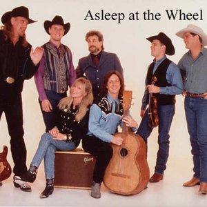 Bild für 'Asleep At The Wheel'