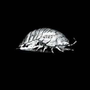 Phantom Papers EP