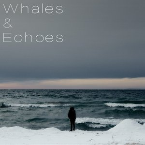 Avatar for Whales & Echoes