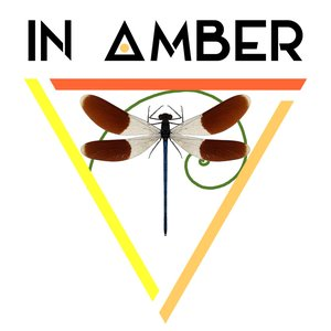 Avatar for In Amber