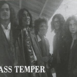 Avatar for Mass Temper