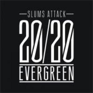 20/20 Evergreen