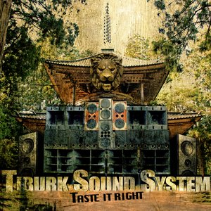 Avatar for Tiburk Sound System