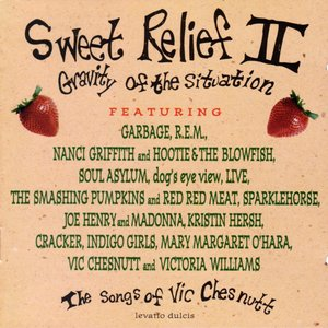 Sweet Relief II: Gravity of the Situation the Songs of Vic Chesnutt