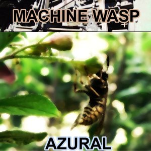 Machine Wasp