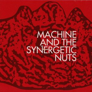 Machine and the Synergetic Nuts