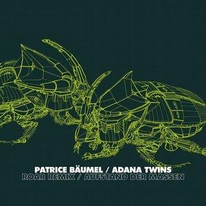 Roar (Adana Twins Remix)