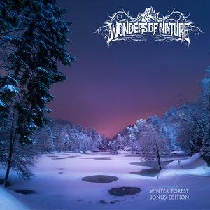 Winter Forest (Bonus Edition)
