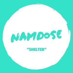 Shelter (feat. Ropoporose & BRNS) - Single