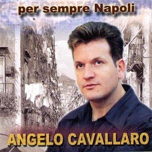 Avatar for Angelo Cavallaro