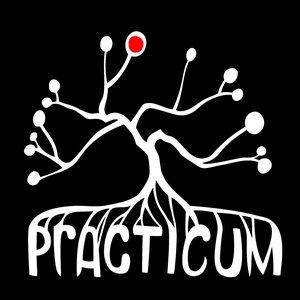 Avatar for Practicum