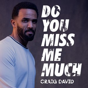 Do You Miss Me Much - Single