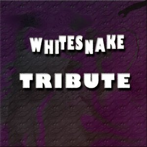 Whitesnake Tribute