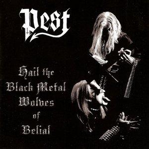 Hail the Black Metal Wolves of Belial