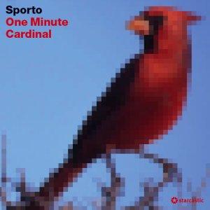 One Minute Cardinal