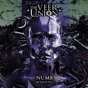 Numb (Acoustic)
