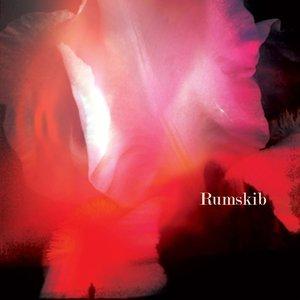 Rumskib