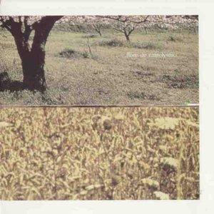 flore de cataclysmo