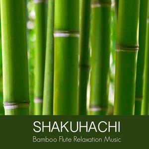 Shakuhachi Bamboo Flute Relaxation Music - Oriental Japanese Music for Zen Buddhist Meditation