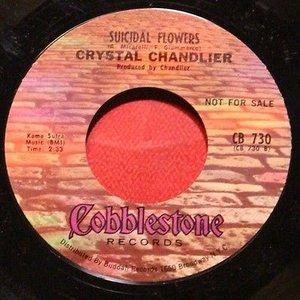Avatar for Crystal Chandlier