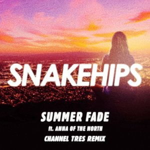Summer Fade (Channel Tres Remix) [feat. Anna of the North] - Single