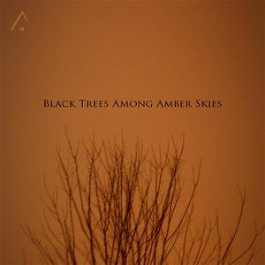 Black Trees Among Amber Skies