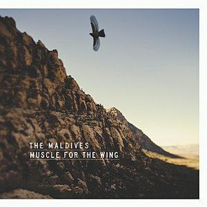 Muscle For The Wing