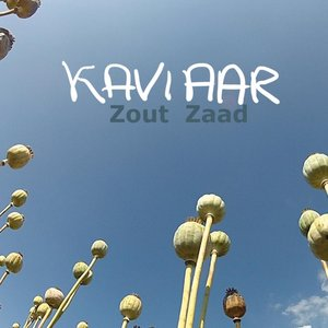 Zout Zaad
