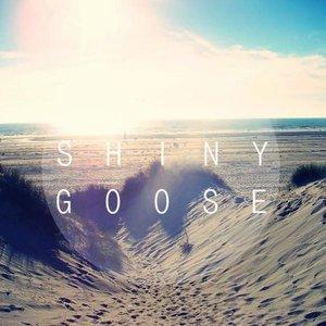 Avatar for Shiny Goose