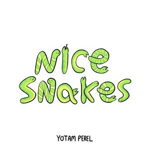 Nice Snakes