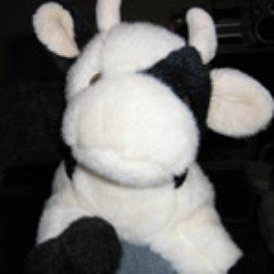 Avatar für Cow Tse Tung Sound System