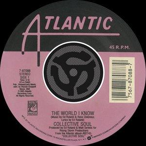 The World I Know / Smashing Young Man [Digital 45]