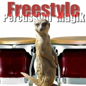 Freestyle Percussion Magik