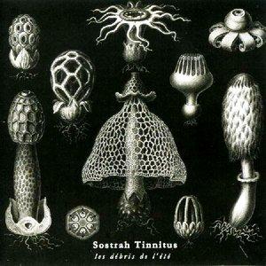 Image for 'Sostrah Tinnitus'
