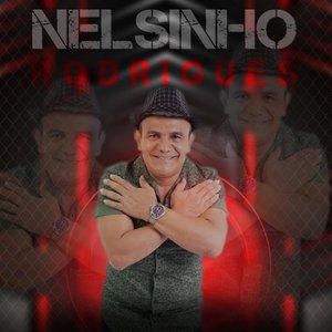 Nelsinho Rodrigues