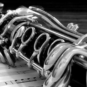 Avatar for Budapest Clarinet Quintet