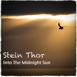 Into The Midnight Sun