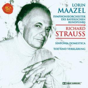Strauss: Sinfonia Domestica/Tod und Verklärung