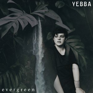 Evergreen - Single